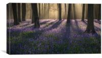 Another early start !!, Canvas Print
