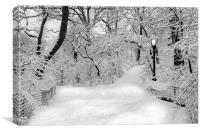 Central Park Dressed Up In White, Canvas Print
