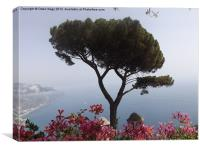 Giardini Villa Rufolo, Canvas Print