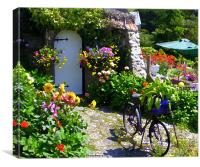 Village country garden., Canvas Print