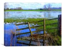 Flooding on the Somerset Levels, Canvas Print
