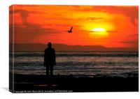 Bird watching on the beach, Canvas Print
