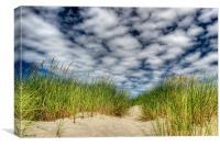"""""""Beach Grass"""", Canvas Print"""
