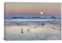 """""""Moon Set"""", Canvas Print"""