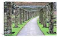 Garden path, Canvas Print