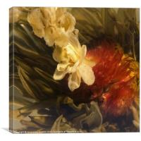 Jasmine Tea, Canvas Print