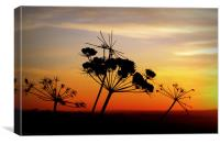 SIMPLE SUNSET, Canvas Print