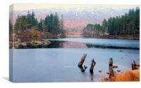 highland mist, Canvas Print