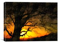 end of day, Canvas Print