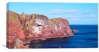 st abbs head , Canvas Print