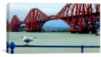 down at queensferry , Canvas Print