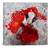 flora underwater, Canvas Print