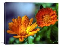 FLOWERS., Canvas Print