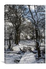 Snowy Bridge, Canvas Print