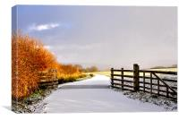 Exmoor in the Snow, Canvas Print