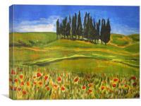 poppys, Canvas Print