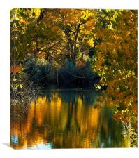 Lake in Fall Reflections, Canvas Print