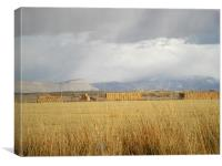 Mountains and September field storm, Canvas Print