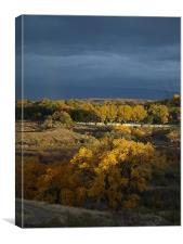 Fall at the cemetery., Canvas Print