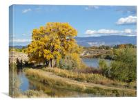 Golden Tree, Canvas Print