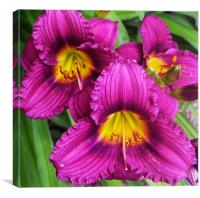 Happy trio flowers in Purple and gold, Canvas Print