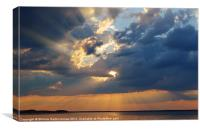 Sun Rays Abound, Canvas Print