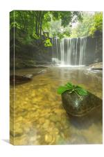 Plas Power Falls , Canvas Print