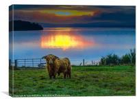 Highland Cow in Loch Lomond Sunset, Canvas Print