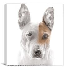 Dog in Contemplation, Canvas Print
