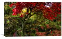 Autumn Colours at Ross Hall, Canvas Print
