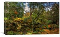 Winter Colours at Rosshall Park, Canvas Print
