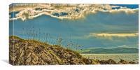 Midsummer at Portencross Ayrshire, Canvas Print