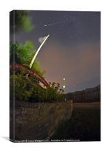 Perseid Meteor, Canvas Print