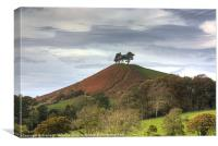 Colmers Hill, Dorset, Canvas Print