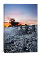Winter Sunrise, Canvas Print