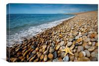 Chesil Beach Starfish, Canvas Print