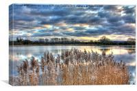 Reservoir Reeds, Canvas Print