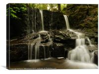 Waterfall in Spring 14, Canvas Print