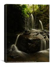 Waterfall in Spring 15, Canvas Print