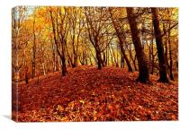 Autumnal Carpet, Canvas Print