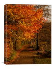 Autumn Walk, Canvas Print