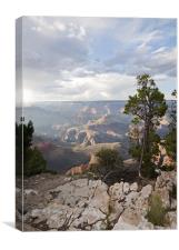 Grand Canyon Evening, Canvas Print