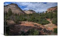 Zion national park mountains, Canvas Print