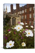Cambridge Wildflowers, Canvas Print