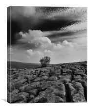 Limestone pavement above Gordale Scar, Canvas Print