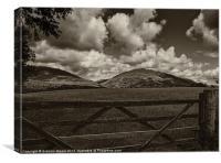 Pastoral scene, Lake District, Canvas Print