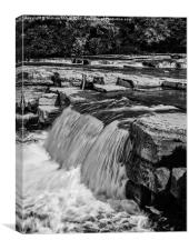 Richmond Falls, Canvas Print