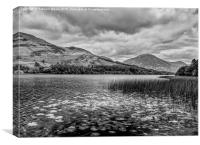 Loweswater, Canvas Print