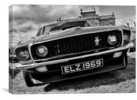 Mustang front, Canvas Print