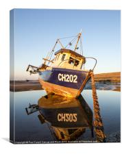 Seafisher portrait, Canvas Print